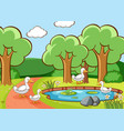 scene with ducks in park vector image vector image