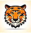 tiger head graphic design vector image