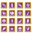 tropical sea shell icons set purple square vector image vector image