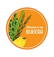 welcome sign for traditional Jewish holiday Sukkot vector image vector image
