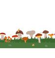 autumn texture seamless border with green grass vector image