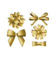 collection decorative golden bows gift box vector image vector image