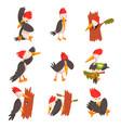 cute woodpecker set funny bird cartoon character vector image vector image