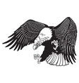 eagle in the fly black white vector image vector image