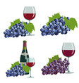 grapes and red wine vector image