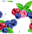 seamless pattern with berries vector image vector image