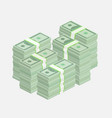 Stacks of one hundred dollar bills vector image