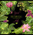 tropical flowers frame vector image vector image