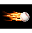 Fire baseball vector image