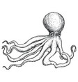octopus hand drawn isolated icon vector image vector image