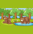 scene with bears in forest vector image vector image