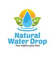 Natural Water Drop Logo vector image