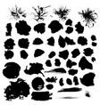 big set of brushes splash texture ink vector image