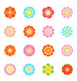 cute floral in flat style vector image