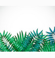 frame of colorful tropical leaves concept of the vector image vector image