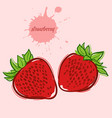 hand draw of strawberry vector image