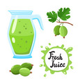juice with gooseberry in glass jug cartoon vector image