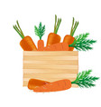 vegetable icon carrot white background imag vector image vector image