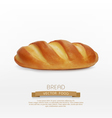 bread loaf isolated on white background vector image vector image
