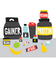 sport foods nutrition and fruits cartoon vector image vector image