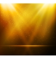 Abstract magic gold light background vector image vector image