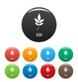 ash leaf icons set color vector image