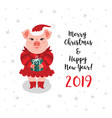 christmas pig greeting card merry christmas happy vector image vector image