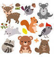 forest animals forest animals vector image