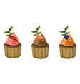 muffin cakes isolated on white background vector image vector image