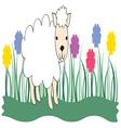 Spring Lamb vector image vector image
