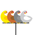 Chicken sitting on perch Birds at farm are sitting vector image vector image