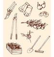 hand drawn garden tools vector image