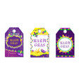 mardi gras carnival tags set labels collection vector image vector image