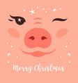 merry christmas card funny christmas pig cute vector image