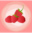 raspberry icon logo berry flat vector image