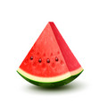 realistic fresh fruit watermelon vector image