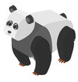 3d design for big panda vector image vector image