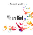 animal world we are bird colorful bird background vector image vector image