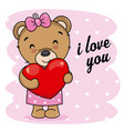 cute bear with heart in hand vector image