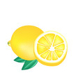 fruit icon lemon white background image vector image vector image