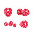 raspberries icon set vector image vector image
