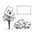 set of hand drawn architect tree and bushes vector image