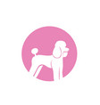 dog animals logo pets shop template icons app vector image vector image