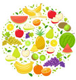 fruits round template vector image vector image