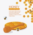 Honey healthy and organic food design vector image vector image