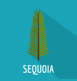 sequoia leaf icon flat style vector image vector image