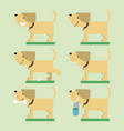 set of dog vector image vector image