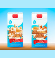set of two milk tetra packs with different tastes vector image vector image