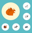 set of zoo icons flat style symbols with turkey vector image