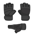set with sports training gloves vector image